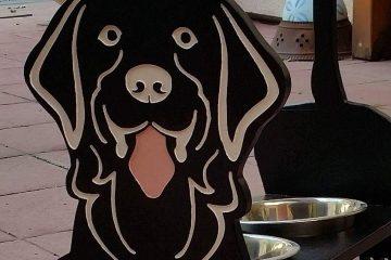 מ.ע 2 – מתקן אוכל לכלב